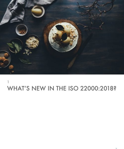 ISO 22000-2018 Explained in 25 Diagrams PT_page-0003